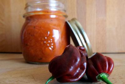 salsa-piccante-con-peperoni-copertina